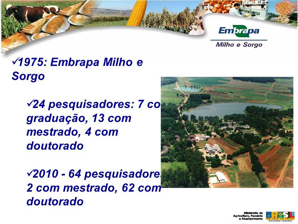 1975: Embrapa Milho e Sorgo 24 pesquisadores: 7 com graduação, 13 com mestrado, 4 com doutorado 2010 - 64 pesquisadores: 2 com mestrado, 62 com doutor