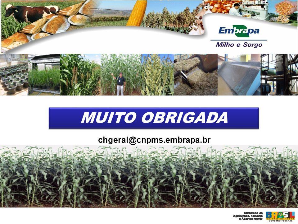 MUITO OBRIGADA chgeral@cnpms.embrapa.br