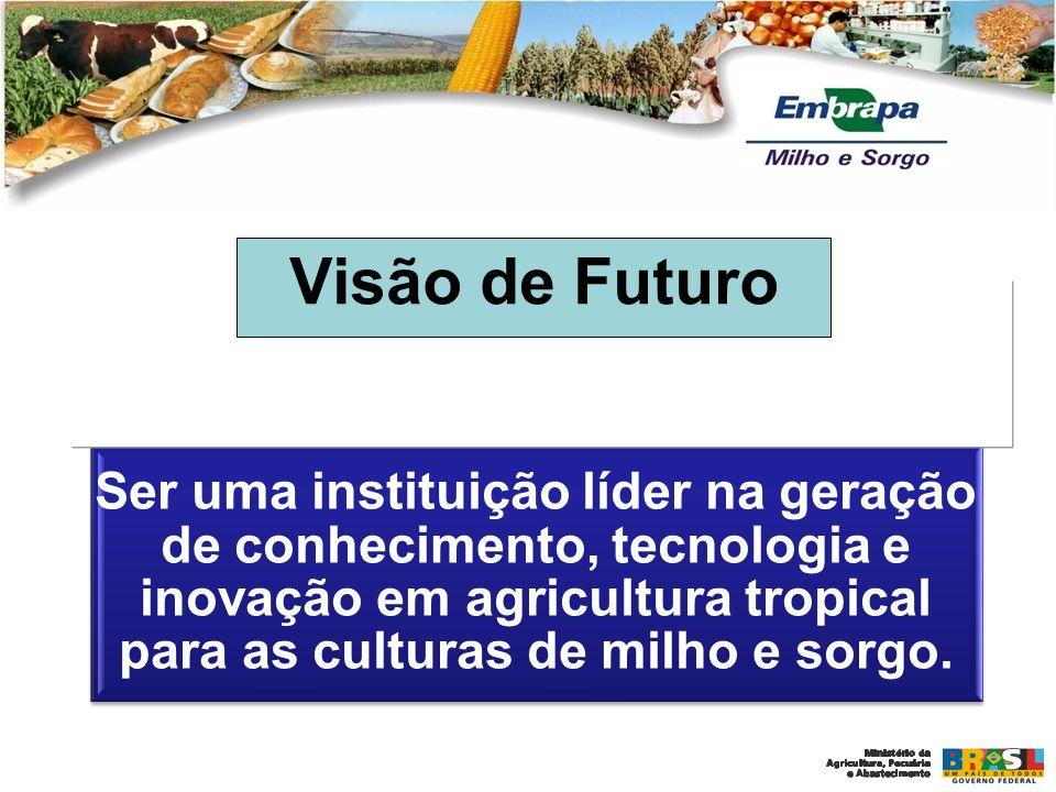 EMBRAPA MILHO E SORGO Ser uma instituição líder na geração de conhecimento, tecnologia e inovação em agricultura tropical para as culturas de milho e