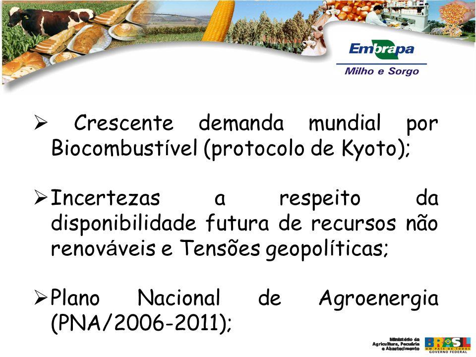 Oportunidades identificada na elaboração do PDU da Embrapa Milho e Sorgo Expansão do mercado de biocombustíveis com aumento da demanda para produção de biomassa para obtenção de álcool.