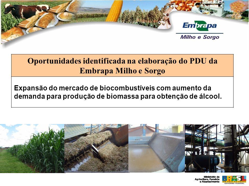 Oportunidades identificada na elaboração do PDU da Embrapa Milho e Sorgo Expansão do mercado de biocombustíveis com aumento da demanda para produção d