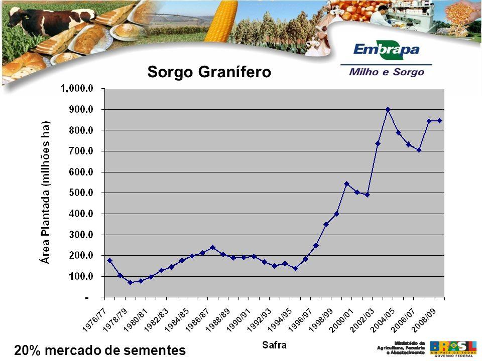 Área Plantada: 11.797,3 milhões de ha Produtividade brasileira: 1.632 kg/ha Produtividade de Santa Catarina: 2.514 kg/ha Produção Brasileira: 19.256 milhões de ton Área Plantada: 14.713,8 milhões de ha Produtividade brasileira: 4.132 kg/ha Produtividade do Paraná: 7.020 kg/ha Produção Brasileira: 58.431 milhões de ton Milho 2007/208 1975/1976