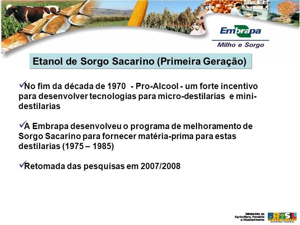 Etanol de Sorgo Sacarino (Primeira Geração) No fim da década de 1970 - Pro-Alcool - um forte incentivo para desenvolver tecnologias para micro-destila