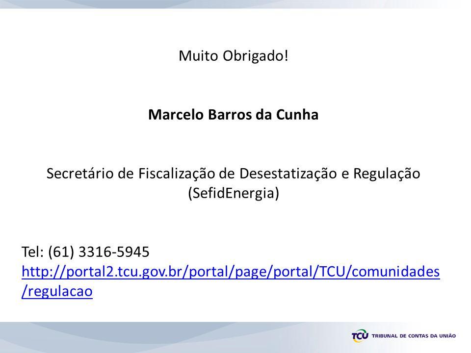 Muito Obrigado! Marcelo Barros da Cunha Secretário de Fiscalização de Desestatização e Regulação (SefidEnergia) Tel: (61) 3316-5945 http://portal2.tcu