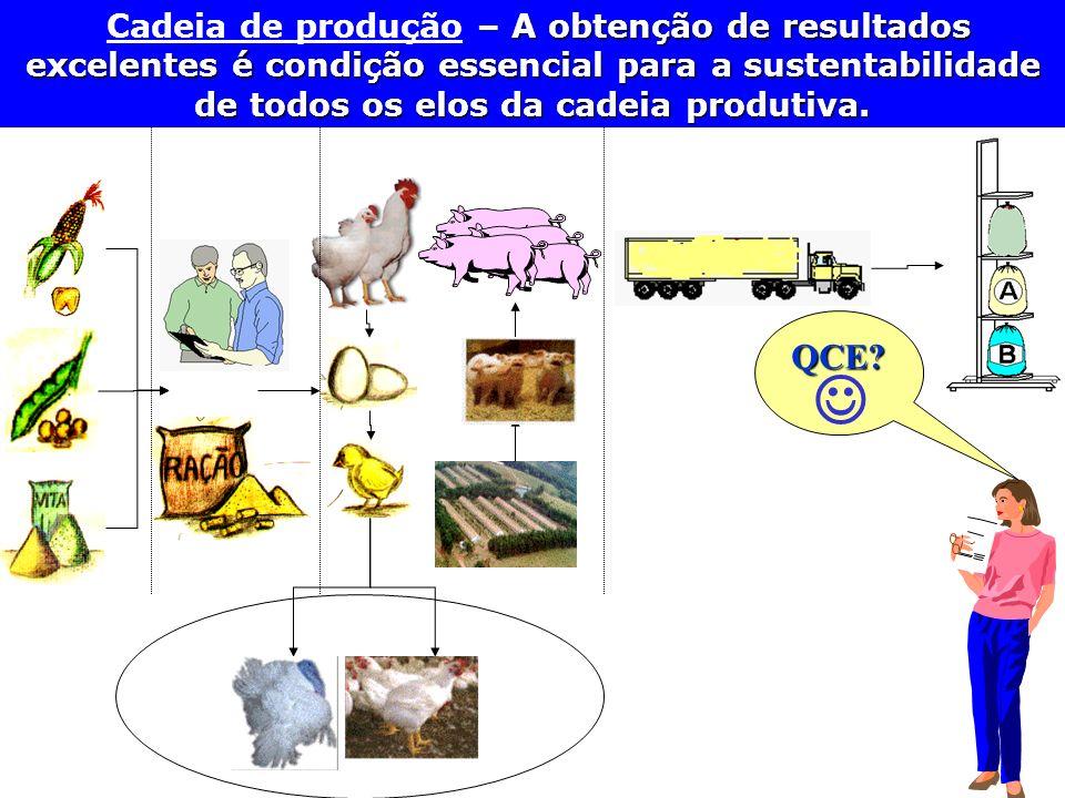 QCE? A obtenção de resultados excelentes é condição essencial para a sustentabilidade de todos os elos da cadeia produtiva. Cadeia de produção – A obt