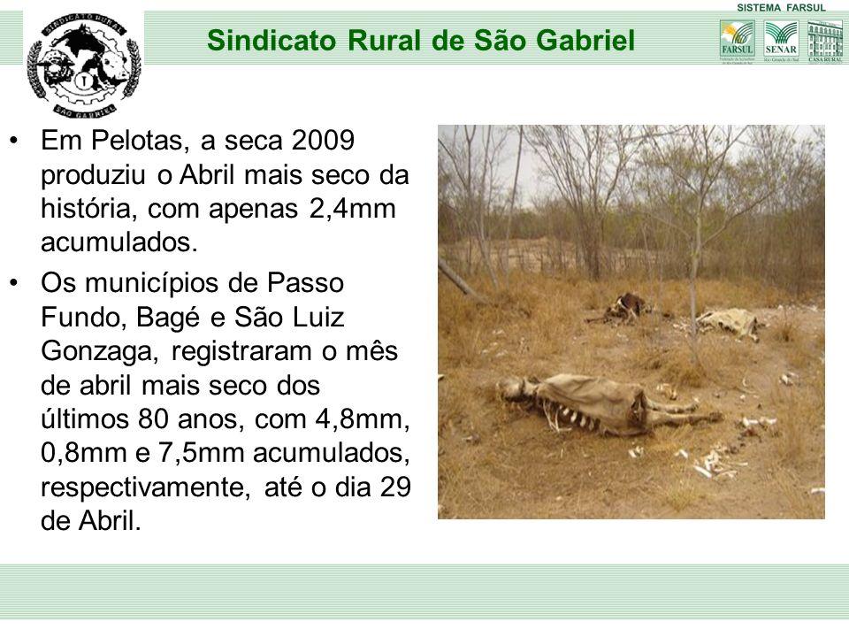 Em Pelotas, a seca 2009 produziu o Abril mais seco da história, com apenas 2,4mm acumulados. Os municípios de Passo Fundo, Bagé e São Luiz Gonzaga, re