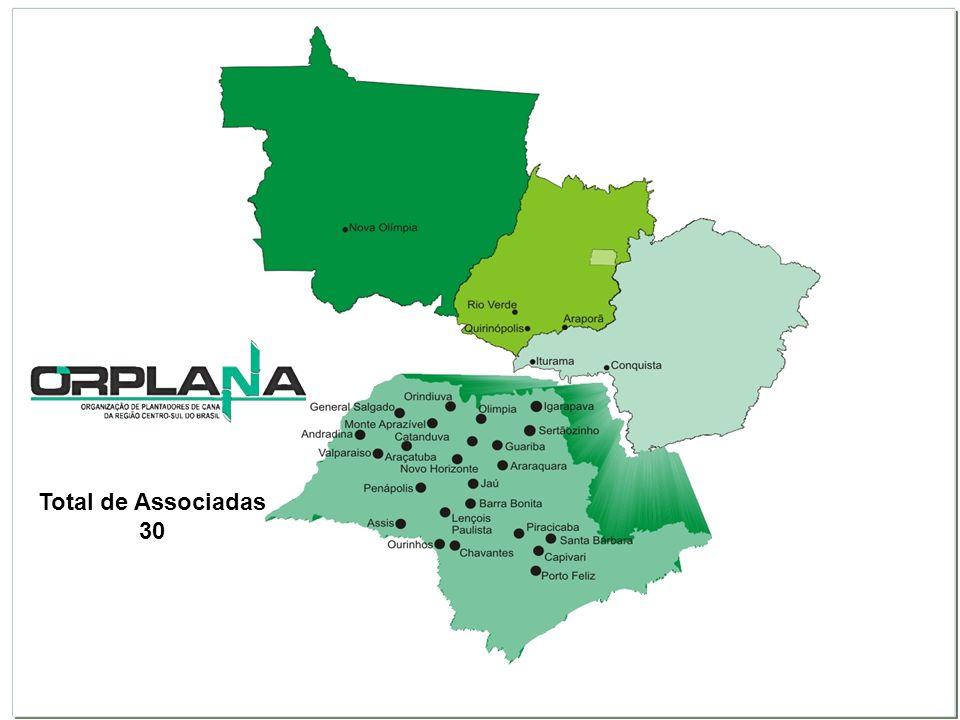 Diretoria Composta por 10 membros: 5 representantes da UNICA e 5 da ORPLANA e igual número de suplentes Deliberações tomadas com maioria absoluta dos votos Compete a ela: -Publicar o regulamento do Sistema -CONSECANA-SP -Publicar os estudos feitos pela CANATEC-SP -Dirimir dúvidas e responder a consultas -Conciliar conflitos CANATEC-SP Composta por 16 membros: 8 representantes da UNICA e 8 da ORPLANA Compete a ela: -Assessorar tecnicamente a Diretoria -Desenvolver estudos e pesquisas para o aprimoramento do Sistema CONSECANA-SP -Informar e orientar os produtores a respeito do Sistema CONSECANA-SP -Elaborar laudos técnicos para apoiar a Diretoria Grupos de Trabalho: Área Agrícola, Industrial, econômica e contrato.