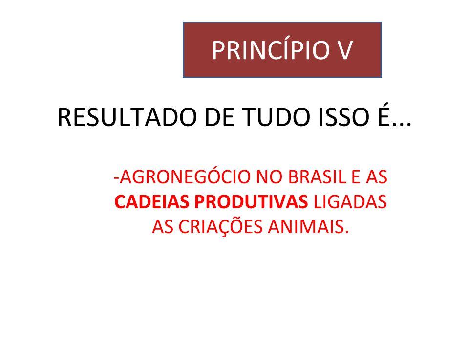 RESULTADO DE TUDO ISSO É... -AGRONEGÓCIO NO BRASIL E AS CADEIAS PRODUTIVAS LIGADAS AS CRIAÇÕES ANIMAIS. PRINCÍPIO V
