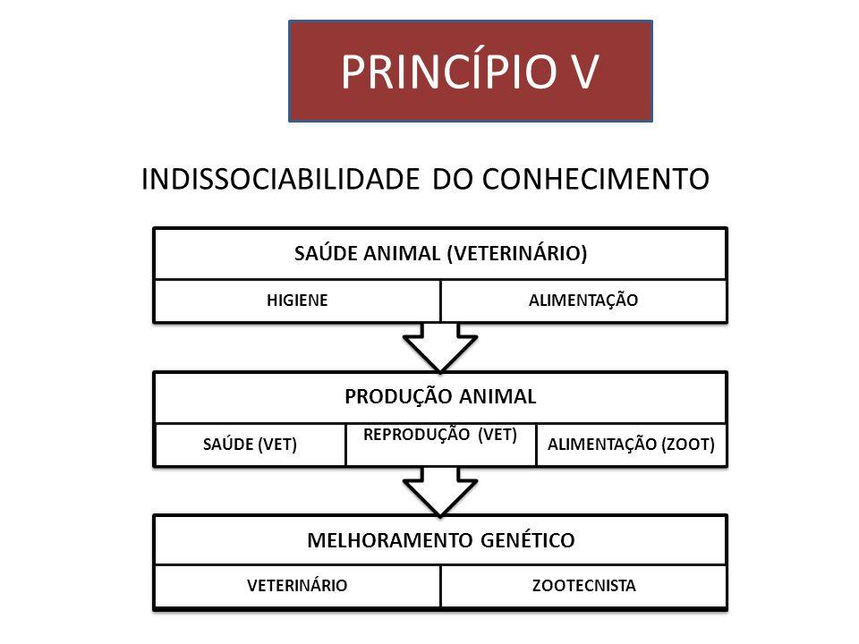 INDISSOCIABILIDADE DO CONHECIMENTO PRINCÍPIO V MELHORAMENTO GENÉTICO VETERINÁRIOZOOTECNISTA PRODUÇÃO ANIMAL SAÚDE (VET) REPRODUÇÃO (VET) ALIMENTAÇÃO (
