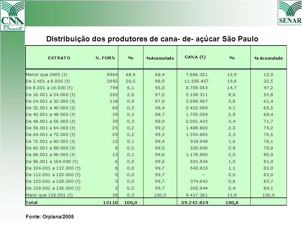 Distribuição dos produtores de cana- de- açúcar São Paulo SAFRA 2005 Fonte: Orplana/2005