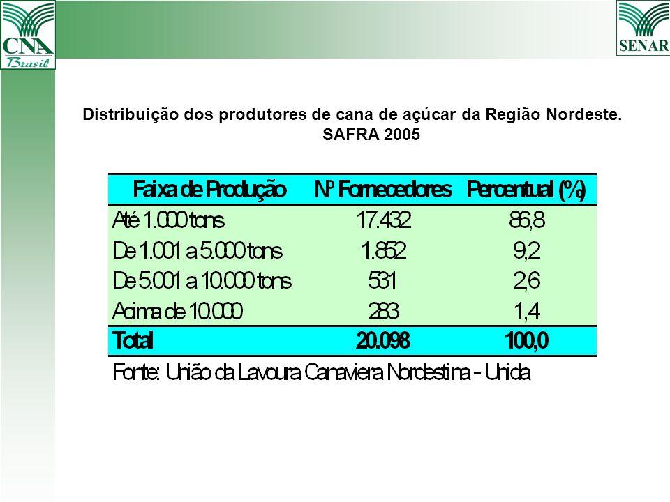 Distribuição dos produtores de cana de açúcar da Região Nordeste. SAFRA 2005