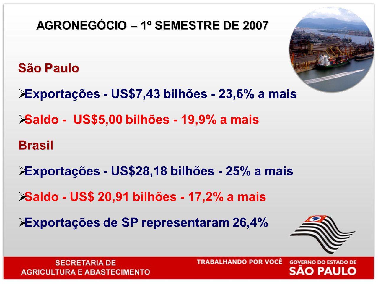 São Paulo Exportações - US$7,43 bilhões - 23,6% a mais Saldo - US$5,00 bilhões - 19,9% a maisBrasil Exportações - US$28,18 bilhões - 25% a mais Saldo - US$ 20,91 bilhões - 17,2% a mais Exportações de SP representaram 26,4% AGRONEGÓCIO – 1º SEMESTRE DE 2007 AGRONEGÓCIO – 1º SEMESTRE DE 2007