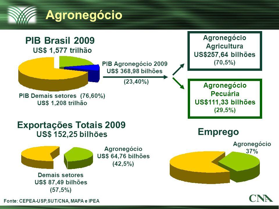 PIB Brasil 2009 Emprego Exportações Totais 2009 Fonte: CEPEA-USP,SUT/CNA, MAPA e IPEA (23,40%) PIB Demais setores (76,60%) US$ 1,208 trilhão PIB Agron
