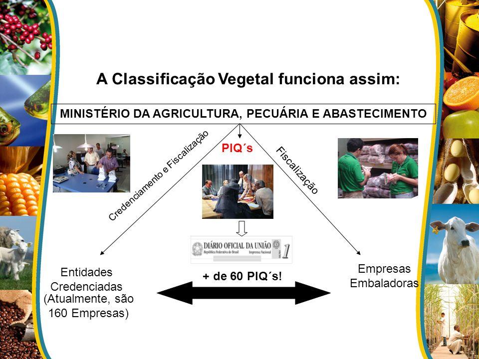 A Classificação Vegetal funciona assim: PIQ´s MINISTÉRIO DA AGRICULTURA, PECUÁRIA E ABASTECIMENTO Entidades Credenciadas Empresas Embaladoras Credenciamento e Fiscalização Fiscalização + de 60 PIQ´s.