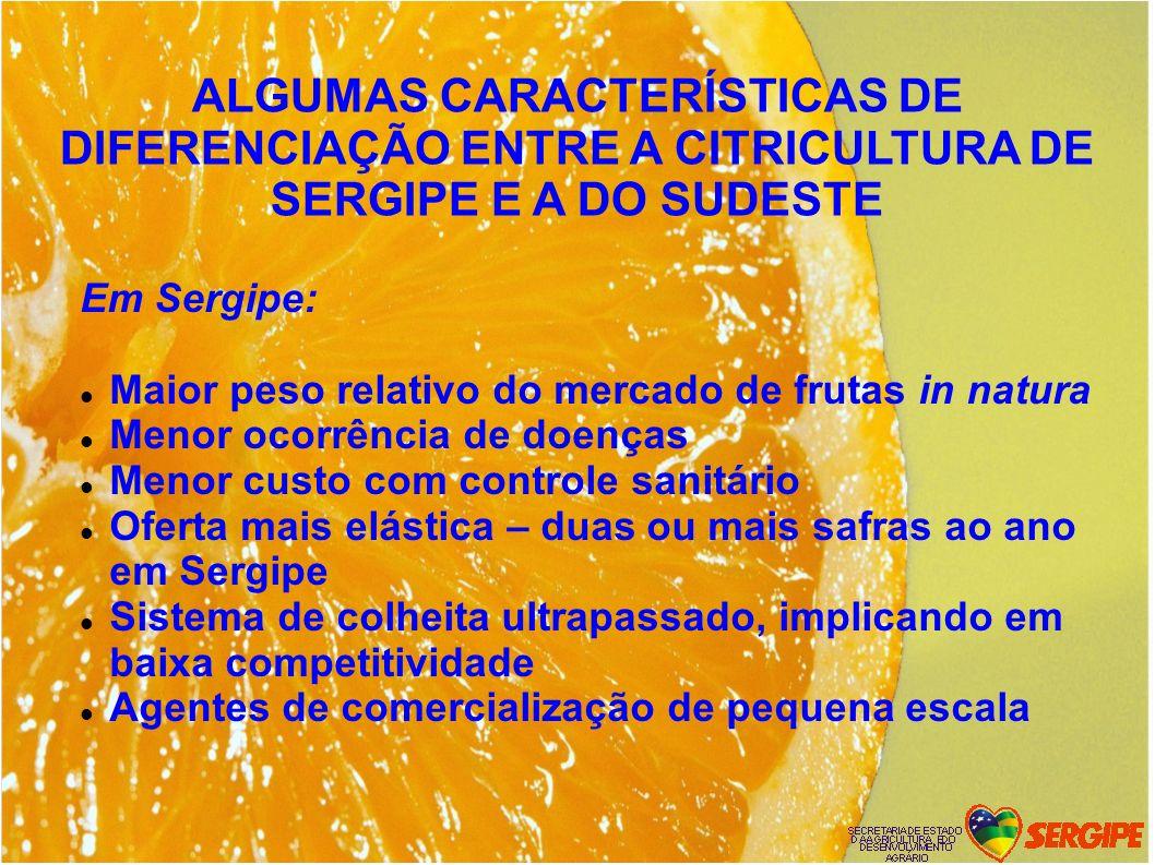 Em Sergipe: Maior peso relativo do mercado de frutas in natura Menor ocorrência de doenças Menor custo com controle sanitário Oferta mais elástica – d