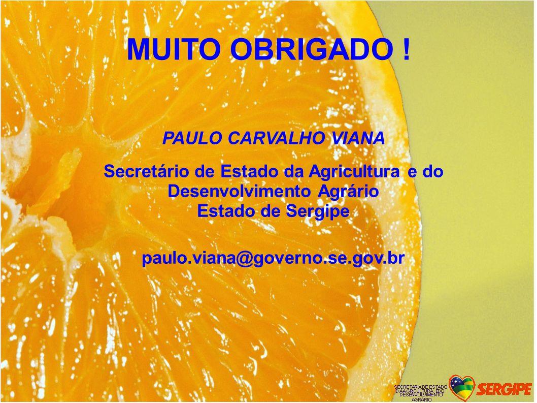 MUITO OBRIGADO ! PAULO CARVALHO VIANA Secretário de Estado da Agricultura e do Desenvolvimento Agrário Estado de Sergipe paulo.viana@governo.se.gov.br