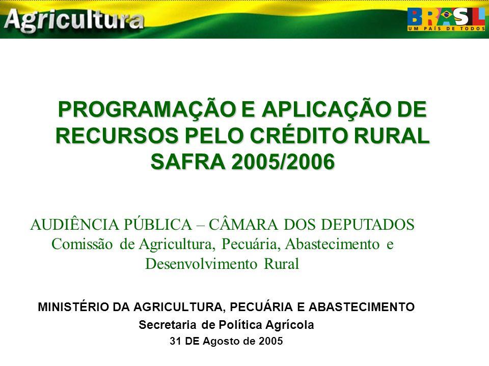 PROGRAMAÇÃO E APLICAÇÃO DE RECURSOS PELO CRÉDITO RURAL SAFRA 2005/2006 MINISTÉRIO DA AGRICULTURA, PECUÁRIA E ABASTECIMENTO Secretaria de Política Agrícola 31 DE Agosto de 2005 AUDIÊNCIA PÚBLICA – CÂMARA DOS DEPUTADOS Comissão de Agricultura, Pecuária, Abastecimento e Desenvolvimento Rural