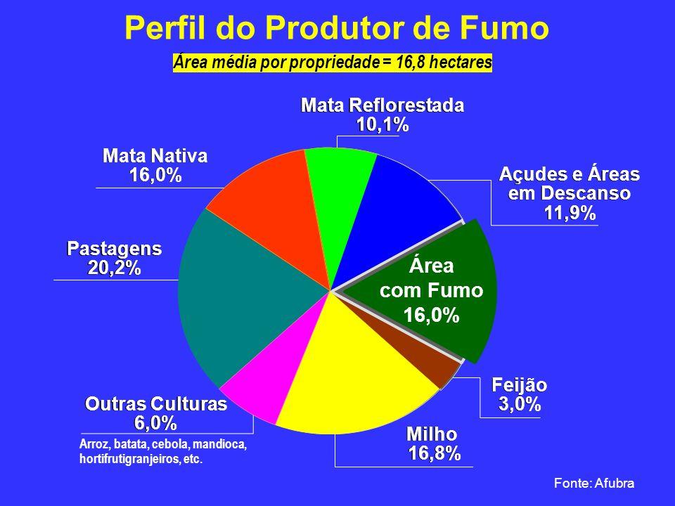 Área média por propriedade = 16,8 hectares Perfil do Produtor de Fumo Fonte: Afubra Milho 16,8% Milho 16,8% Mata Reflorestada 10,1% Mata Reflorestada