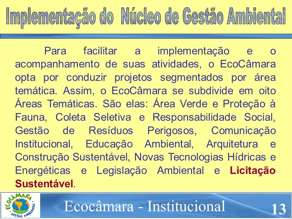 Para facilitar a implementação e o acompanhamento de suas atividades, o EcoCâmara opta por conduzir projetos segmentados por área temática. Assim, o E