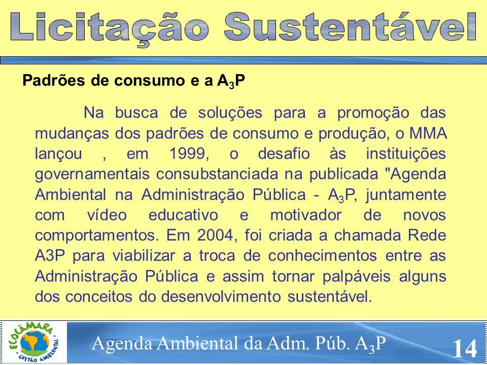 Na busca de soluções para a promoção das mudanças dos padrões de consumo e produção, o MMA lançou, em 1999, o desafio às instituições governamentais c