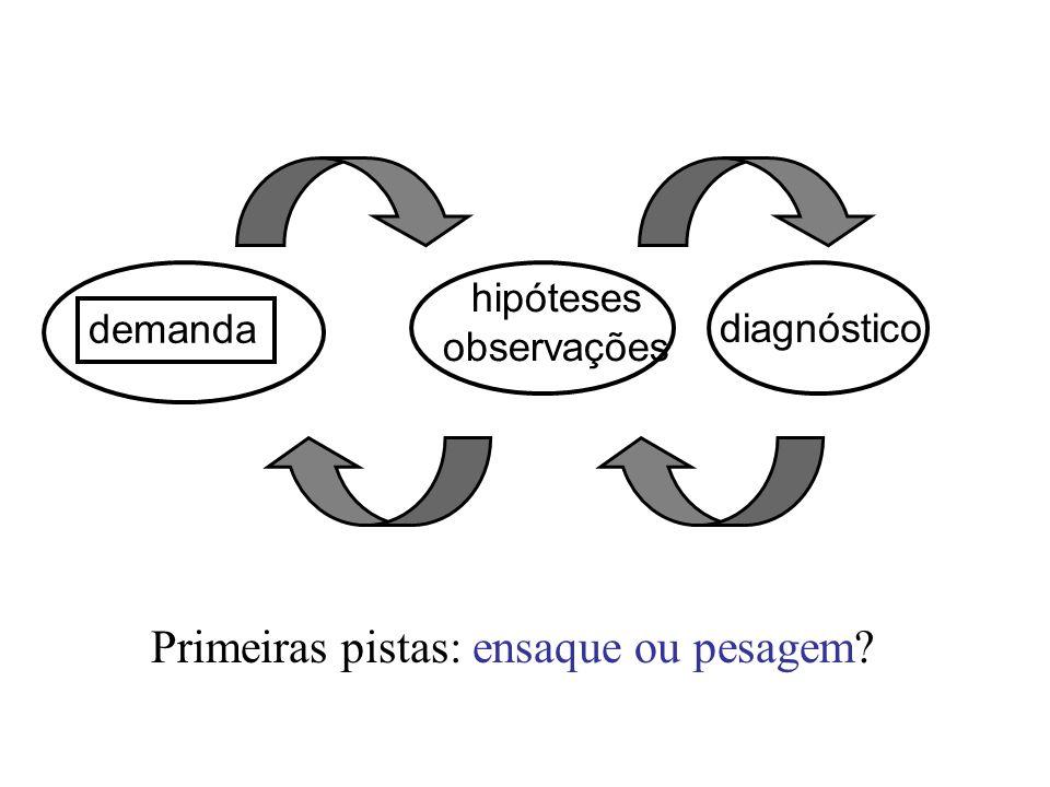 demanda hipóteses observações diagnóstico Primeiras pistas: ensaque ou pesagem?