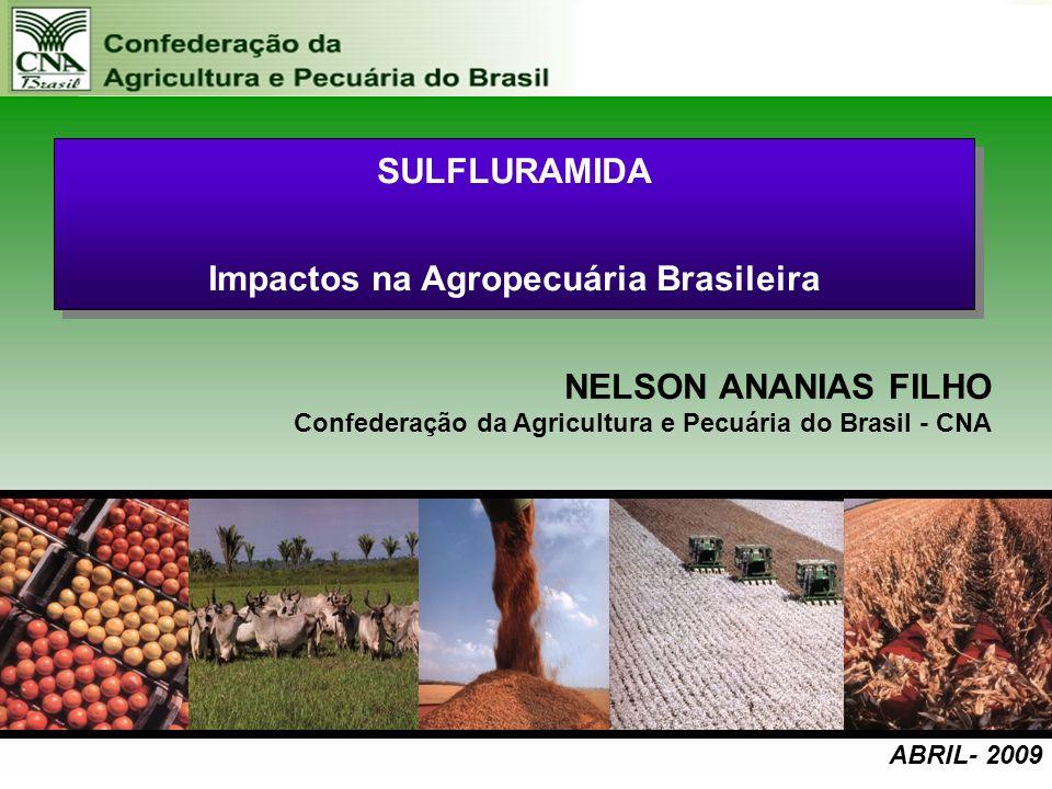 novembro – 2008 SULFLURAMIDA Impactos na Agropecuária Brasileira SULFLURAMIDA Impactos na Agropecuária Brasileira NELSON ANANIAS FILHO Confederação da