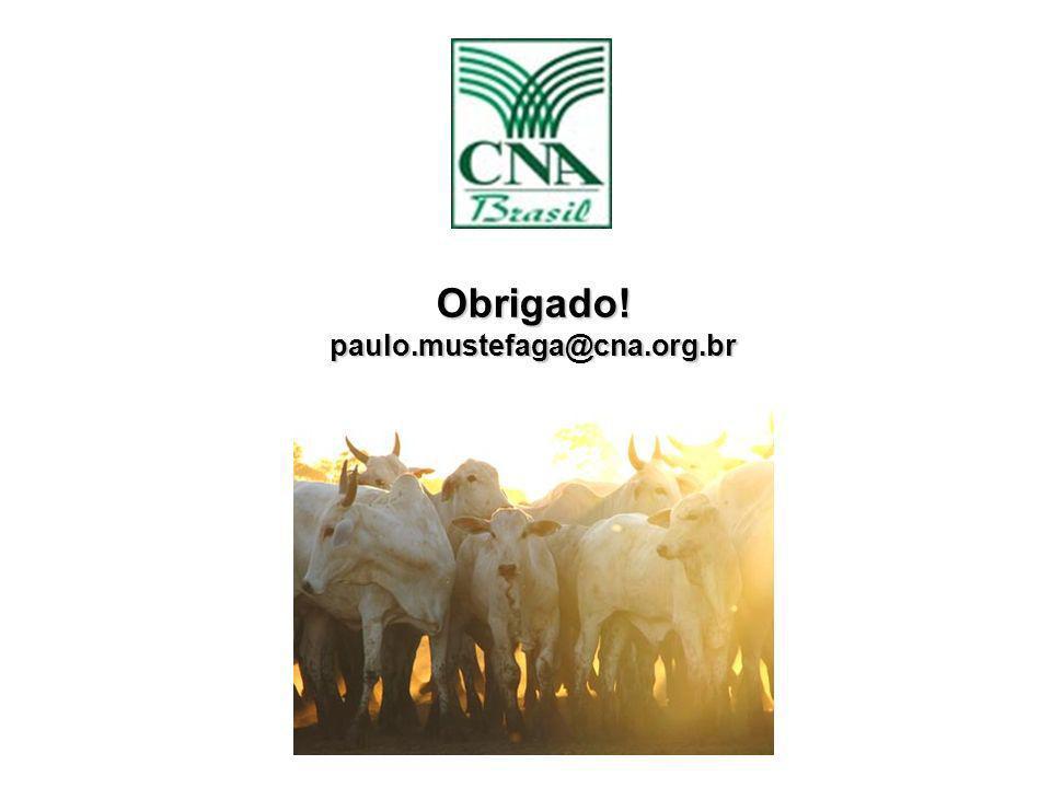 Obrigado! paulo.mustefaga@cna.org.br