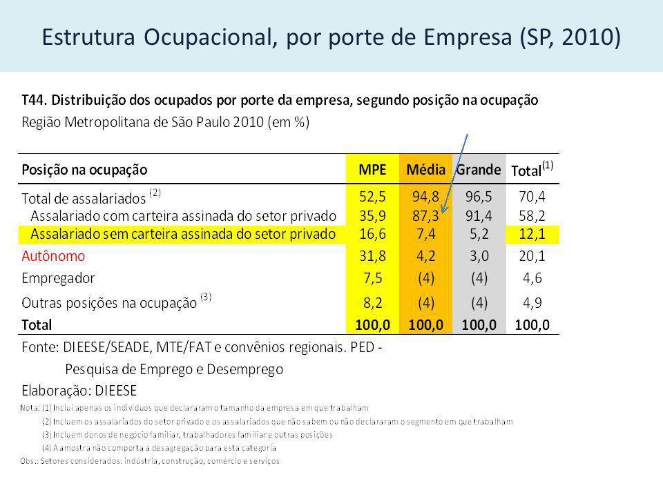 Estrutura Ocupacional, por porte de Empresa (SP, 2010)