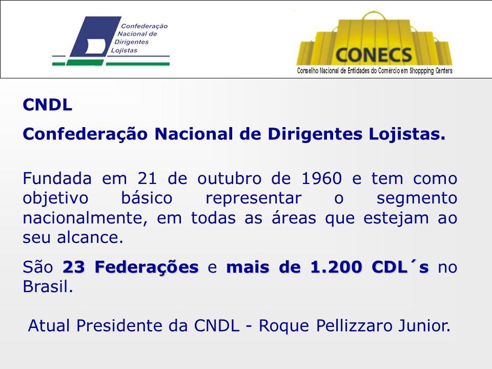 CNDL Confederação Nacional de Dirigentes Lojistas.