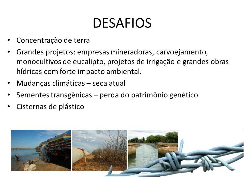 DESAFIOS Concentração de terra Grandes projetos: empresas mineradoras, carvoejamento, monocultivos de eucalipto, projetos de irrigação e grandes obras hídricas com forte impacto ambiental.