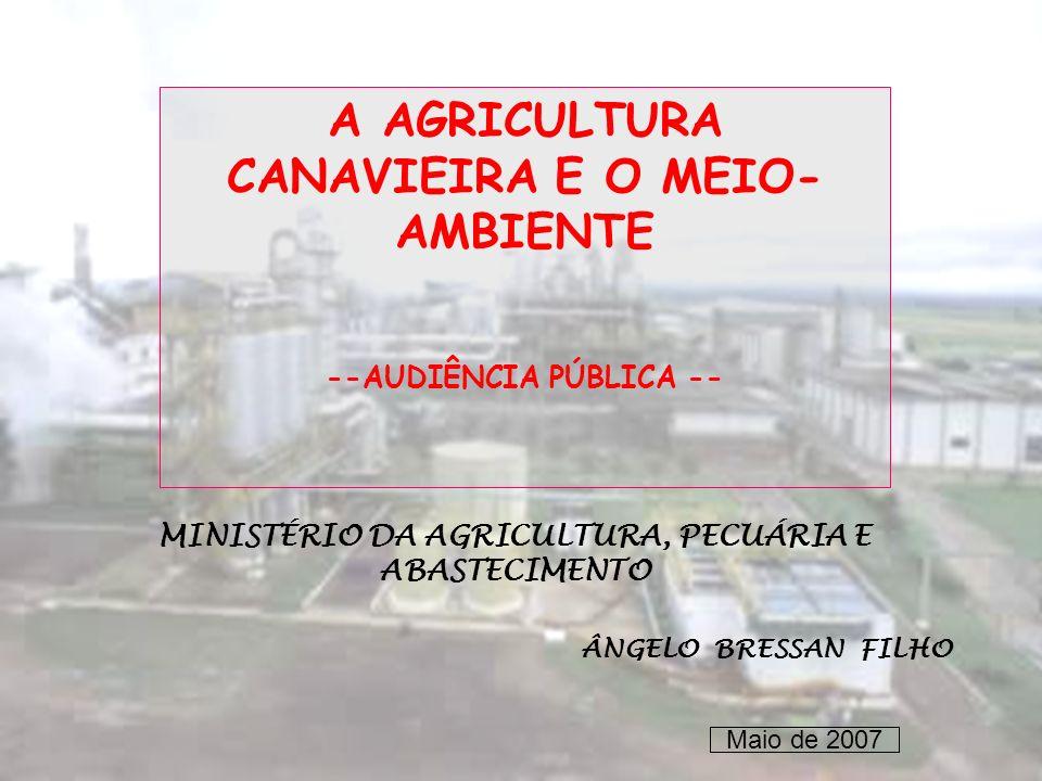 A AGRICULTURA CANAVIEIRA E O MEIO- AMBIENTE --AUDIÊNCIA PÚBLICA -- MINISTÉRIO DA AGRICULTURA, PECUÁRIA E ABASTECIMENTO ÂNGELO BRESSAN FILHO Maio de 20