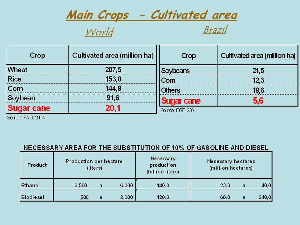 Main Crops - Cultivated area World Brazil