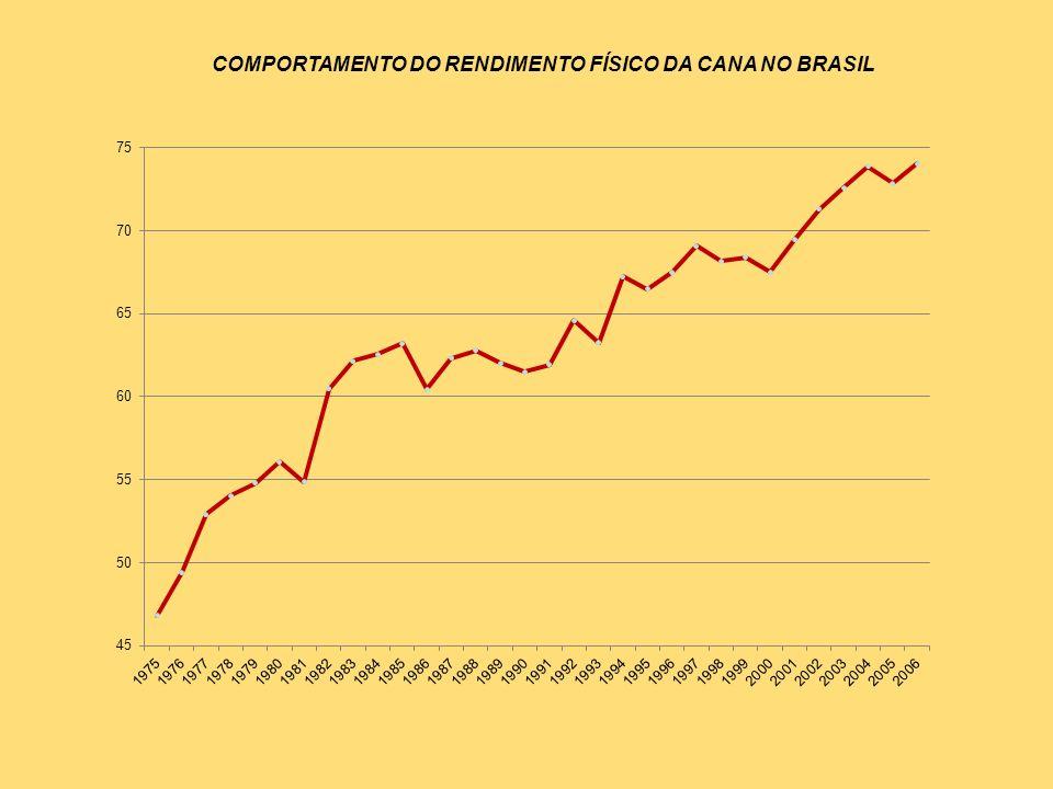 COMPORTAMENTO DO RENDIMENTO FÍSICO DA CANA NO BRASIL