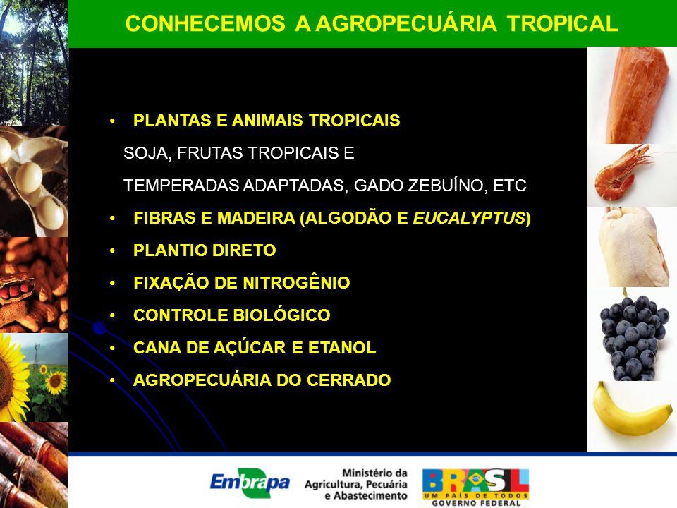 CONHECEMOS A AGROPECUÁRIA TROPICAL PLANTAS E ANIMAIS TROPICAIS SOJA, FRUTAS TROPICAIS E TEMPERADAS ADAPTADAS, GADO ZEBUÍNO, ETC FIBRAS E MADEIRA (ALGO