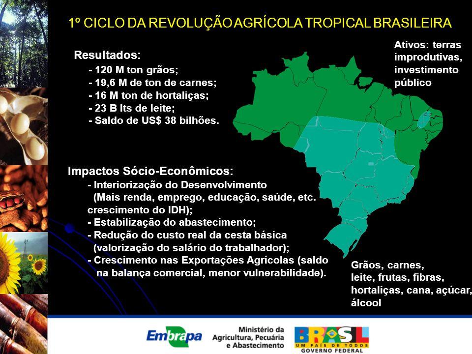 1º CICLO DA REVOLUÇÃO AGRÍCOLA TROPICAL BRASILEIRA Resultados: - 120 M ton grãos; - 19,6 M de ton de carnes; - 16 M ton de hortaliças; - 23 B lts de l