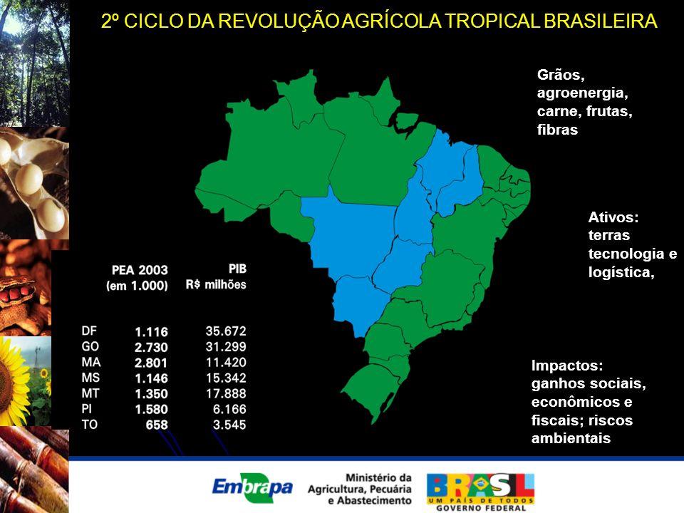 2º CICLO DA REVOLUÇÃO AGRÍCOLA TROPICAL BRASILEIRA Grãos, agroenergia, carne, frutas, fibras Ativos: terras tecnologia e logística, Impactos: ganhos s