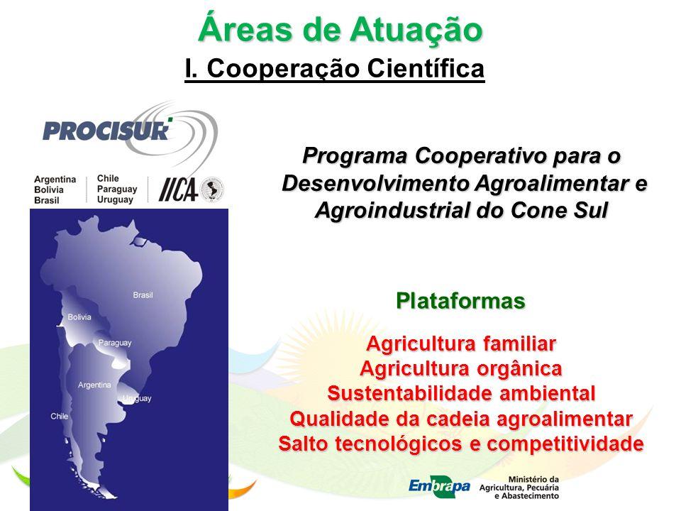 Áreas de Atuação I. Cooperação Científica Programa Cooperativo para o Desenvolvimento Agroalimentar e Agroindustrial do Cone Sul Desenvolvimento Agroa