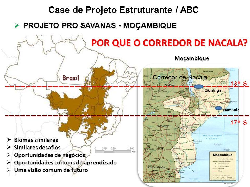 POR QUE O CORREDOR DE NACALA? Moçambique Brasil 13º S 17º S Corredor de Nacala Lichinga Nampula Biomas similares Biomas similares Similares desafios S