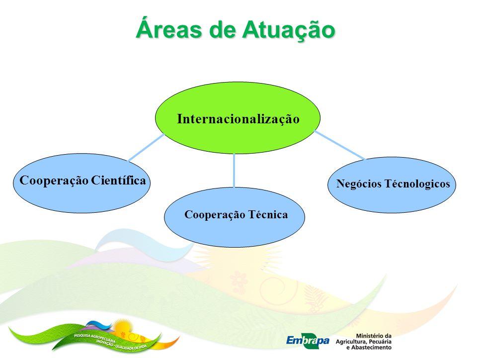 Áreas de Atuação Cooperação Científica Internacionalização Cooperação Técnica Negócios Técnologicos