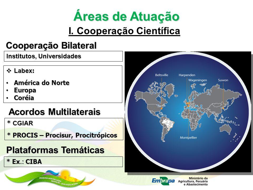 Áreas de Atuação I. Cooperação Científica * CGIAR * PROCIS – Procisur, Procitrópicos Labex : Labex : América do Norte América do Norte Europa Europa C