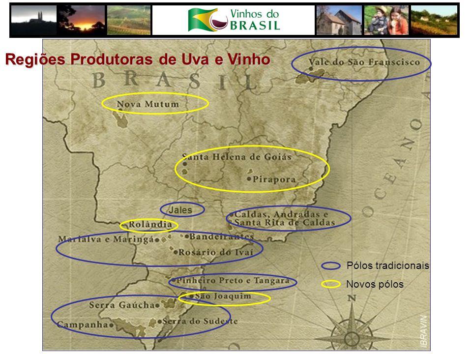 Novos pólos Pólos tradicionais Jales Regiões Produtoras de Uva e Vinho