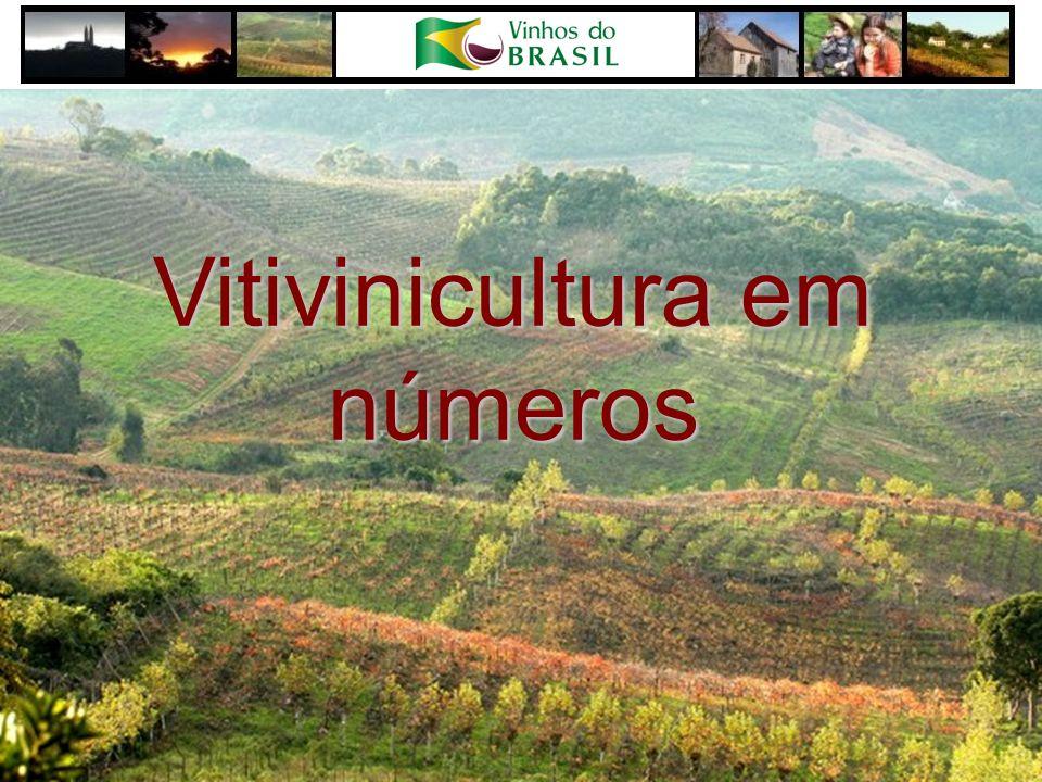 Vitivinicultura em números