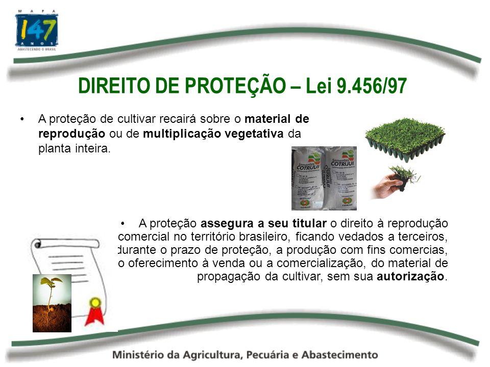 DIREITO DE PROTEÇÃO – Lei 9.456/97 A proteção assegura a seu titular o direito à reprodução comercial no território brasileiro, ficando vedados a terc