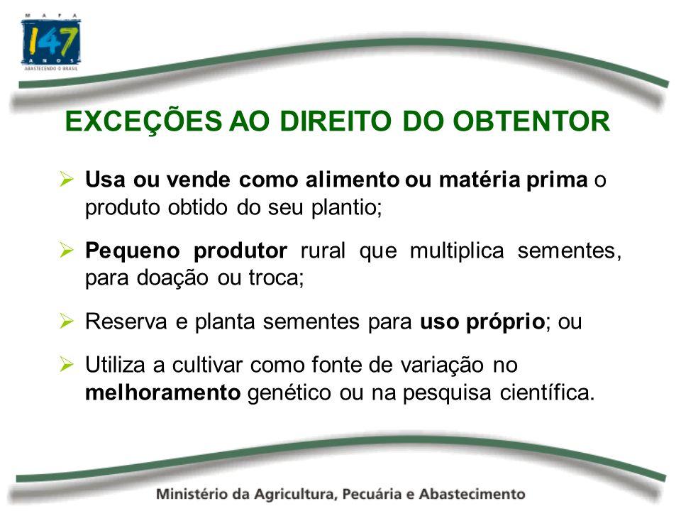 EXCEÇÕES AO DIREITO DO OBTENTOR Usa ou vende como alimento ou matéria prima o produto obtido do seu plantio; Pequeno produtor rural que multiplica sem