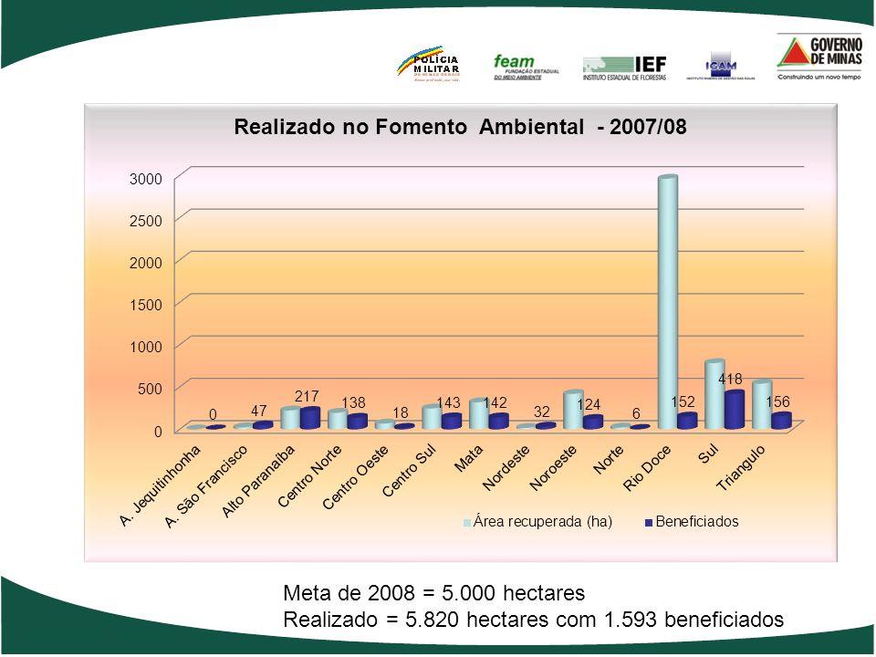 Meta de fomento Social para 2008
