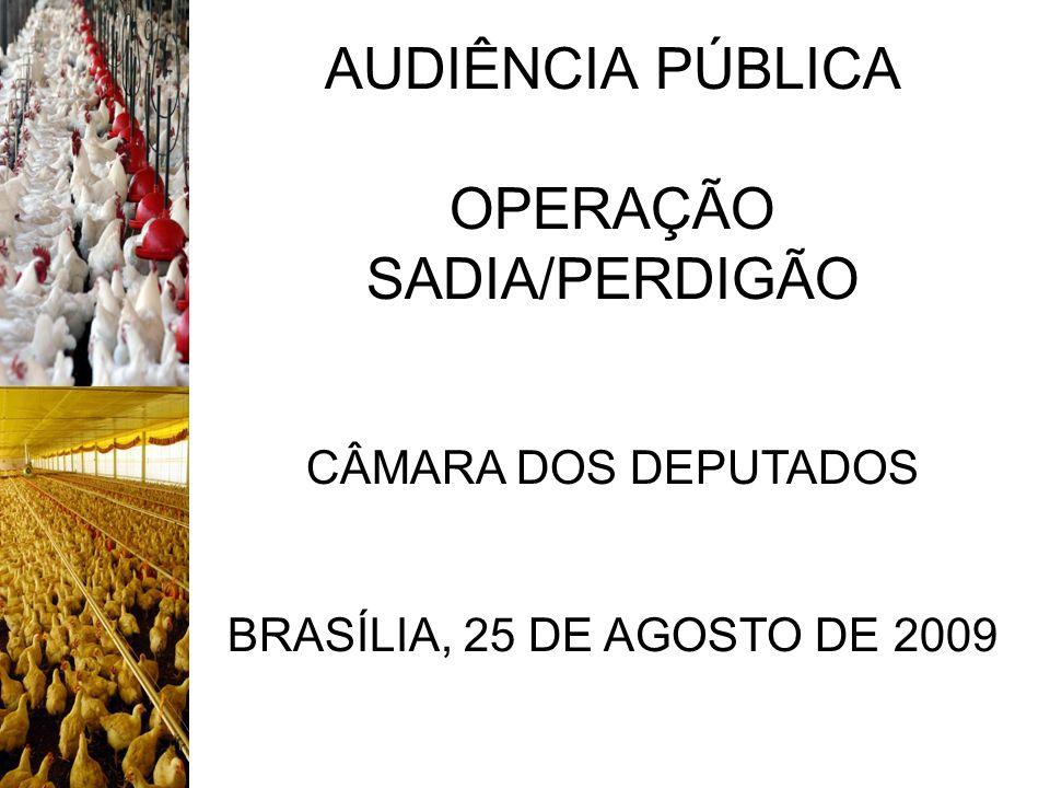 AUDIÊNCIA PÚBLICA OPERAÇÃO SADIA/PERDIGÃO CÂMARA DOS DEPUTADOS BRASÍLIA, 25 DE AGOSTO DE 2009
