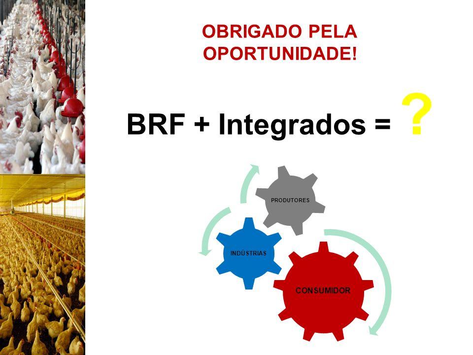OBRIGADO PELA OPORTUNIDADE! BRF + Integrados = ? CONSUMIDOR INDÚSTRIAS PRODUTORES