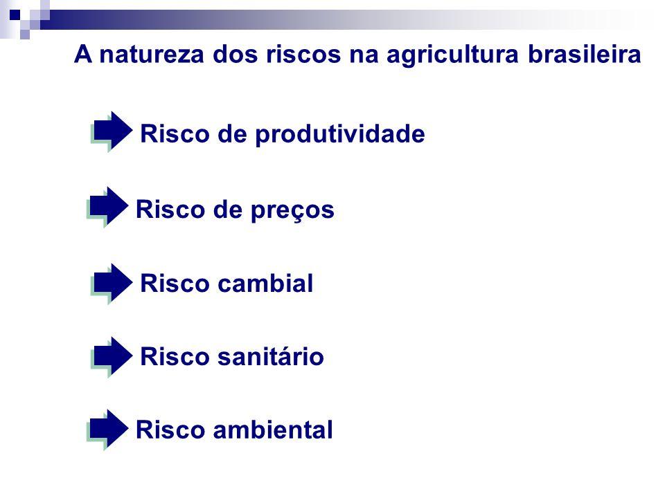 A natureza dos riscos na agricultura brasileira Risco de produtividade Risco cambialRisco sanitárioRisco ambiental Risco de preços