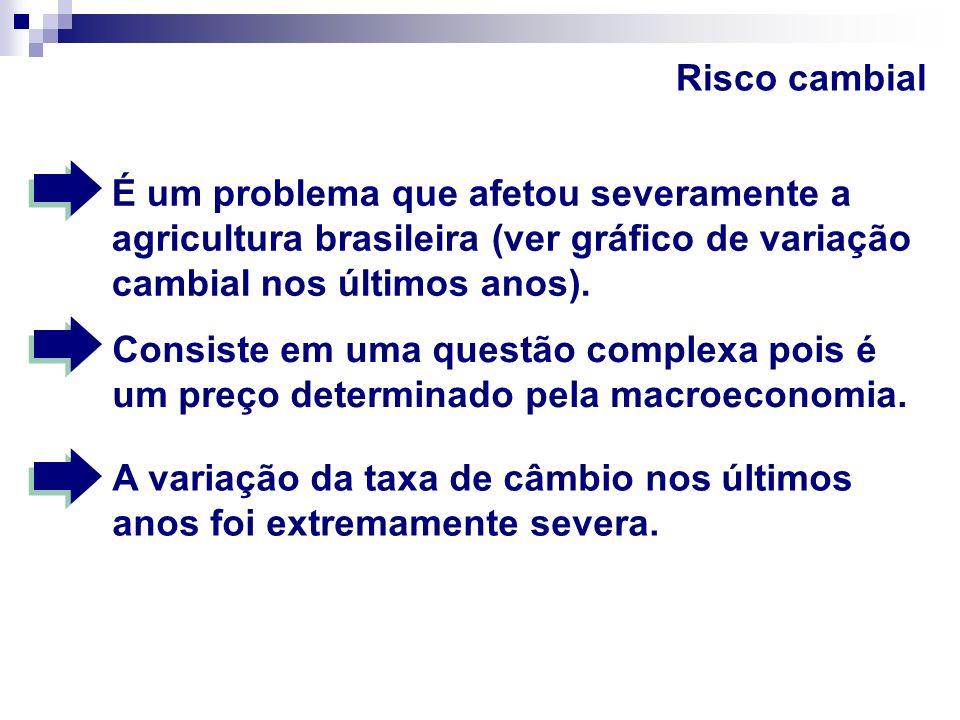 Risco cambial É um problema que afetou severamente a agricultura brasileira (ver gráfico de variação cambial nos últimos anos).