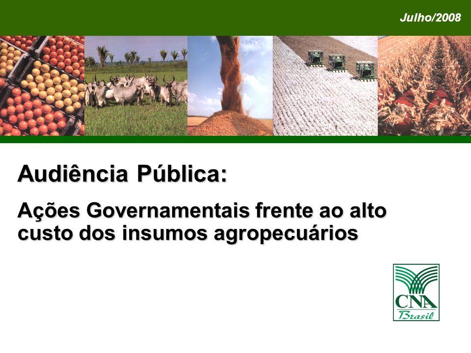 Audiência Pública: Ações Governamentais frente ao alto custo dos insumos agropecuários Julho/2008